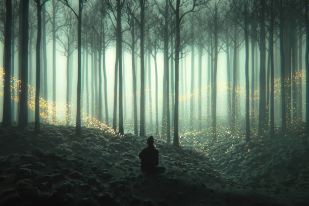 Woman in the forest with mysterious fantasy lights stock photo
