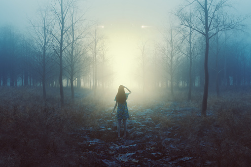 Woman in the forest with mysterious lights at night, 3D generated image.