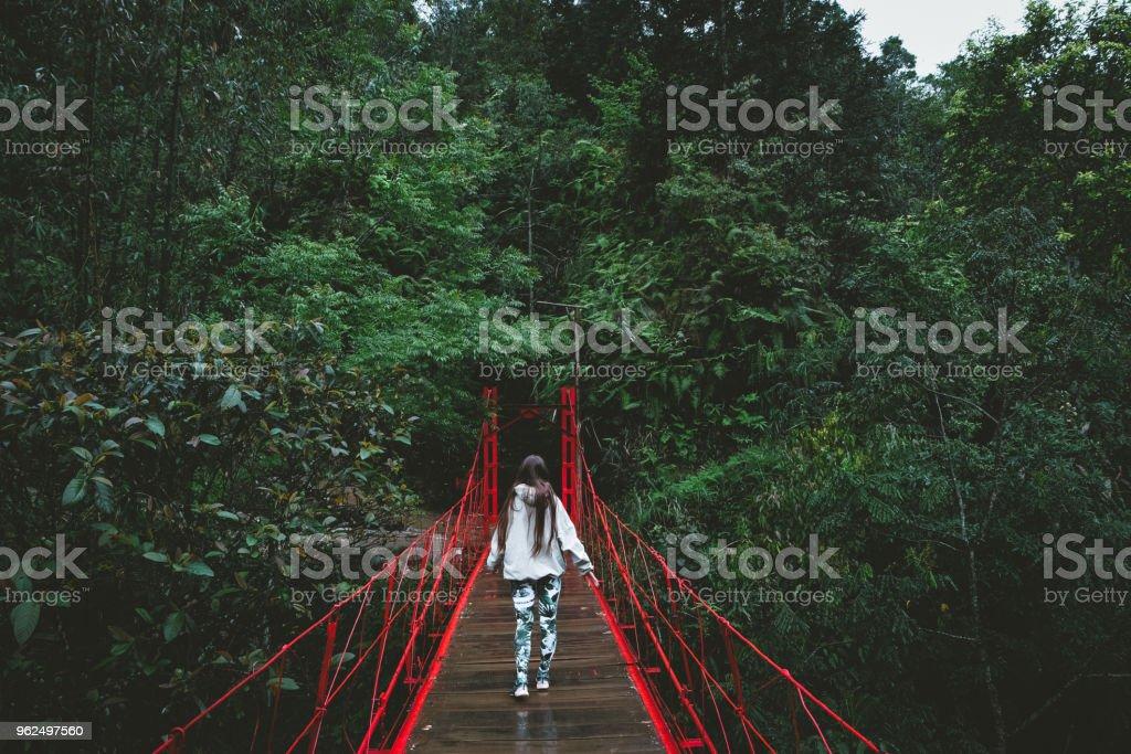 Mulher na ponte vermelha na floresta tropical no norte do Vietnã - Foto de stock de 20 Anos royalty-free