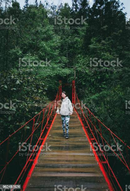 Foto de Mulher Na Ponte Vermelha Na Floresta Tropical No Norte Do Vietnã e mais fotos de stock de 20 Anos