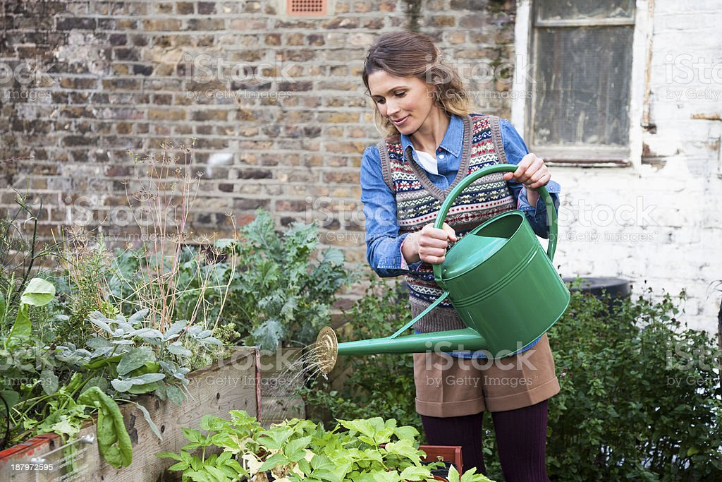 Woman In Urban City Garden Watering Plants Stock Photo & More ...