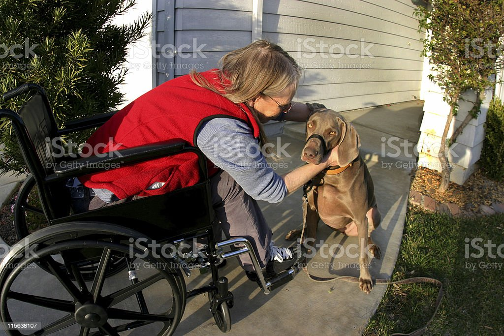 Woman in wheelchair with dog picture royalty-free stock photo