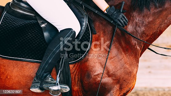 Woman in white riding pants and black riding boots sitting on a brown horse, black gloves on hands, holding riding whip