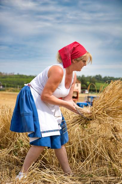 woman in  wintage clothes on the field in harwest time stock photo