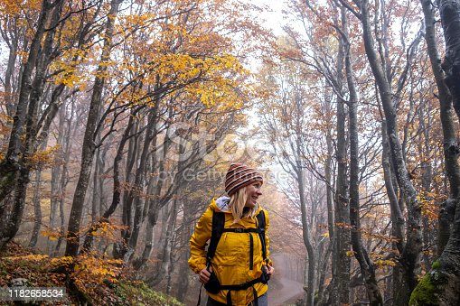 istock Woman in Yellow Cape walking through beautiful Autumn Colored Forest 1182658534