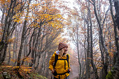 Woman walking through beautiful Autumn Forest , Slovenia. Europe.