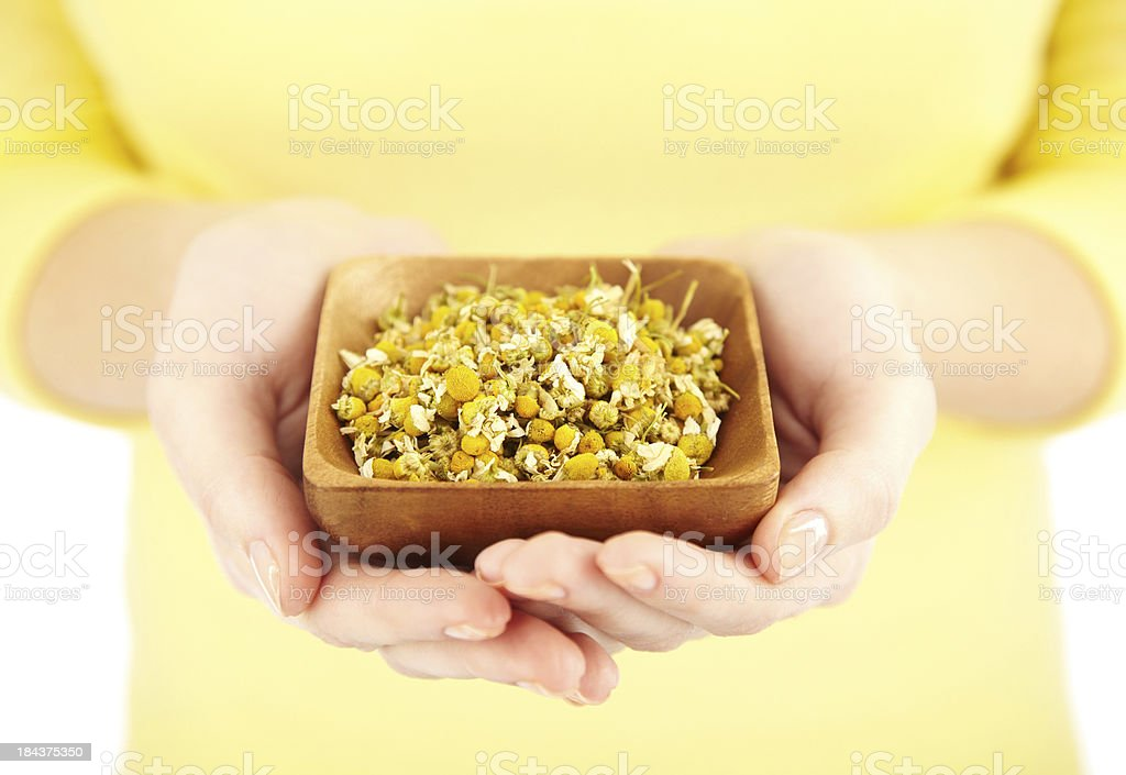 Woman in yellow holding wooden bowl full of dried chamomile royalty-free stock photo