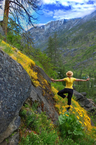 Woman in yoga pose in mountains among yellow wildflowers in spring. stock photo
