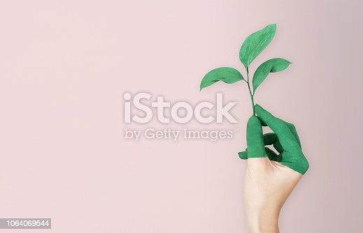 istock Woman is holding green leaf branch with painted hand, pink soft background 1064069544