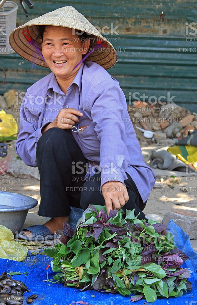 woman is selling basil leaves outdoor in Vinh, Vietnam stock photo