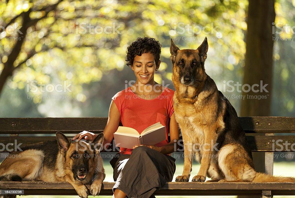 Woman is sitting on a bench with two german shepherds stock photo