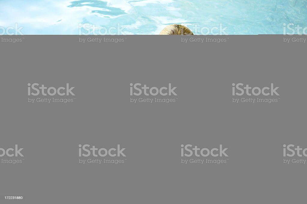 Woman jumping in water royalty-free stock photo