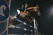 Horse hurdle jumping competition. Young woman mid-air in jump over a small hurdle.