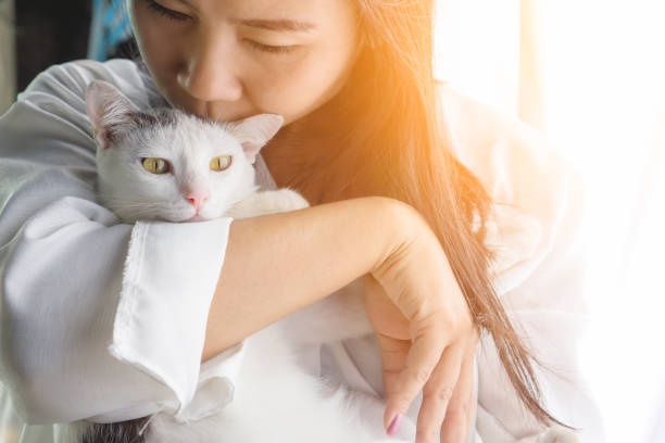 Woman kissing her cute white cat with love picture id876502720?b=1&k=6&m=876502720&s=612x612&w=0&h=rbzvrr2t7nfb28xmnfuvmxhq9lkkldfc3eiaoilhsy8=
