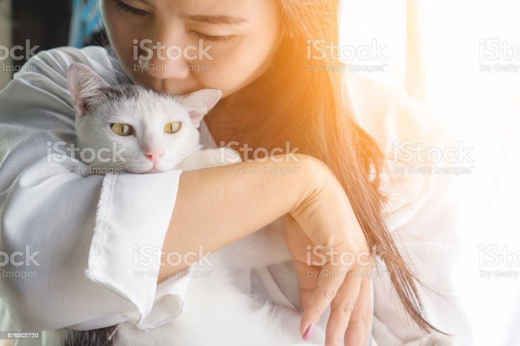 woman kissing her cute white cat with love stock photo