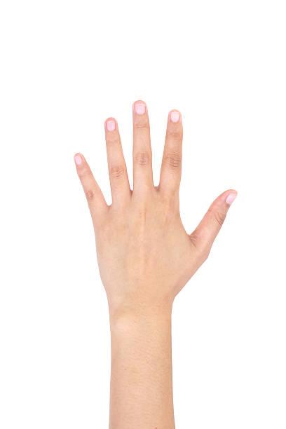 femme main gauche montre cinq doigts isolés. - gaucher photos et images de collection