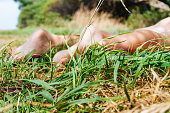 Woman legs lying on a colorful cloth in the grass