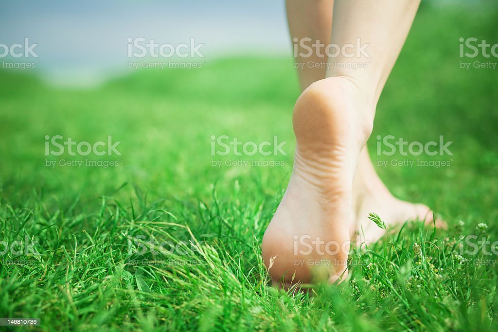 Woman legs on green grass stock photo