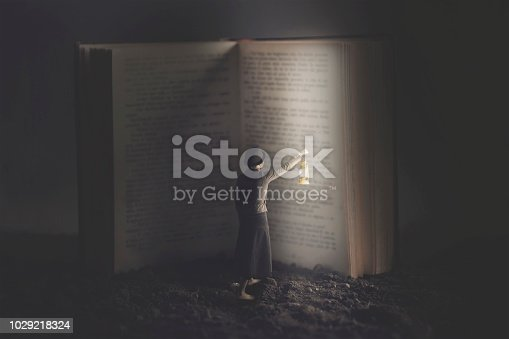 istock woman lights a gigantic book with a lantern at night 1029218324