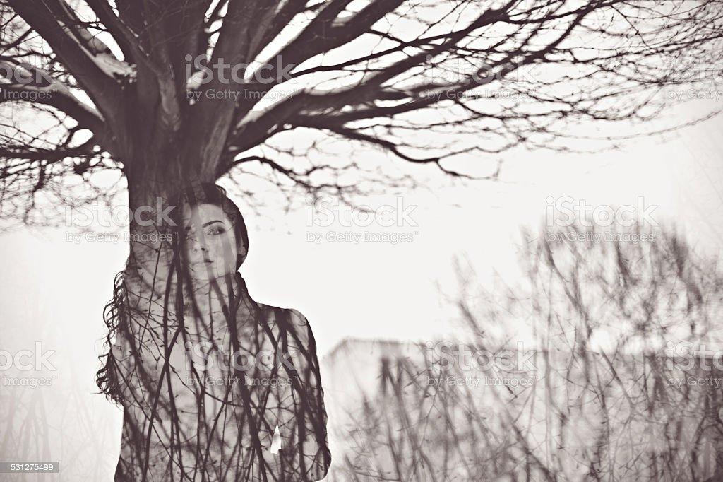 Woman like tree art concept stock photo