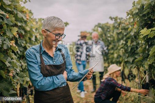 1063236916 istock photo Woman looking at digital tablet 1058394366