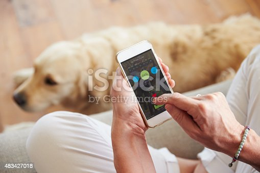 483426960istockphoto Woman Looking At Health Monitoring App On Smartphone 483427018