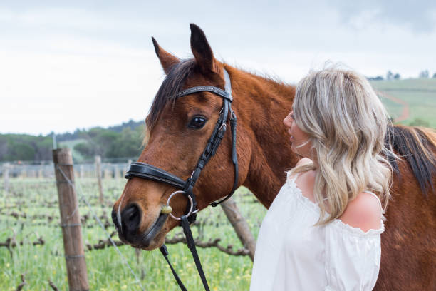 Woman looking at her chestnut Arab horse stock photo