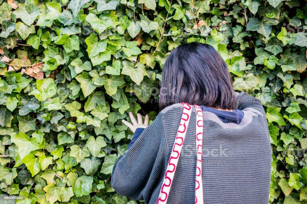 Woman looking at ivy royalty-free stock photo