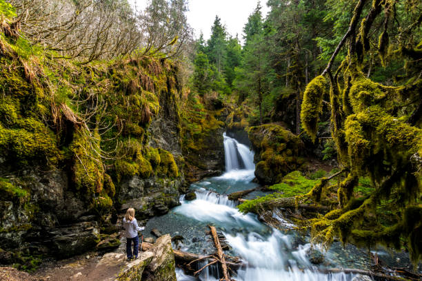Woman looking at rocky waterfall Long exposure of a lonely woman looking at Virgin creek falls in the Chugach National Forest, Alaska fallen tree stock pictures, royalty-free photos & images