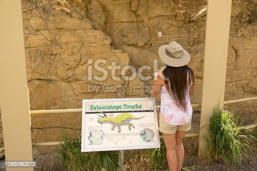 Standing near the sandstone rock face, a woman with a hat looks closely at a natural cast of a Triceratops dinosaur track made about 68 million years ago during the Late Cretaceous in Golden, Colorado's Triceratops Trail July 14, 2020.