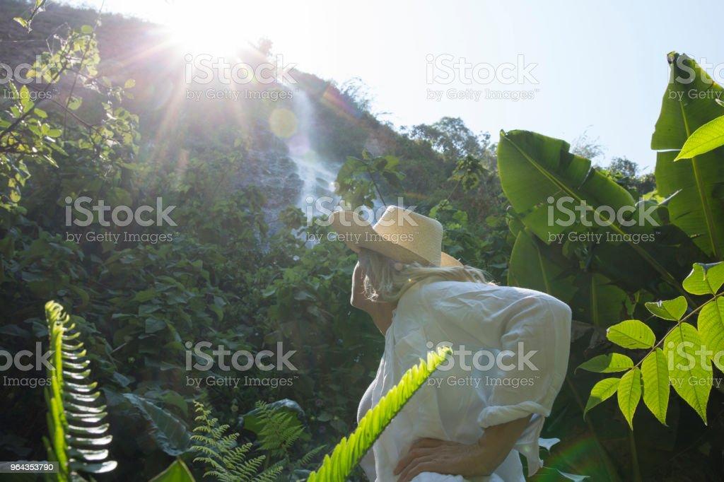 Mulher olha para a cachoeira na floresta tropical ao nascer do sol - Foto de stock de 55-59 anos royalty-free