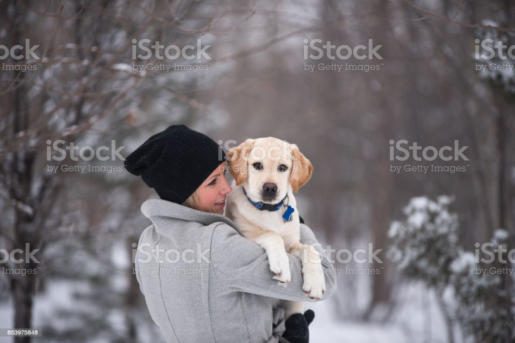 Woman lovingly holds yellow lab puppy while he yawns in a snowy forest stock photo