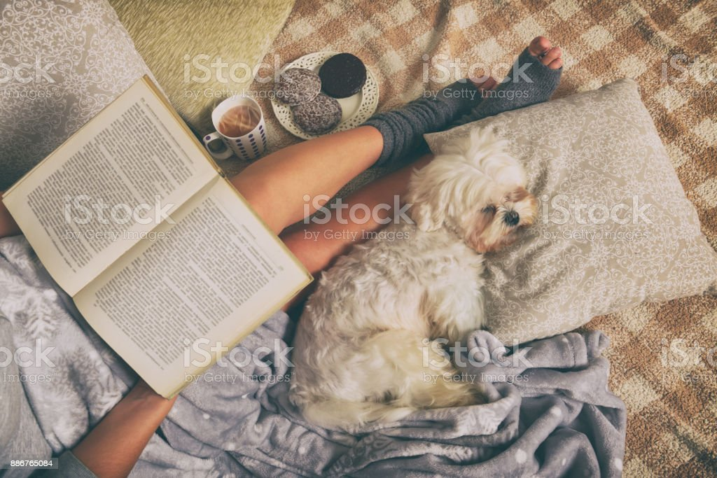 Woman lying on bed with dog stock photo