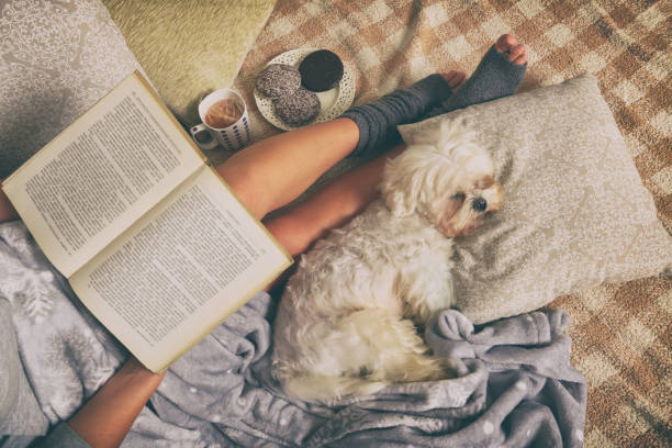 woman lying on bed with dog - hygge imagens e fotografias de stock