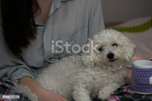 618750646 istock photo Woman lying on bed with dog 936675228