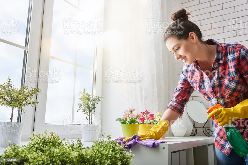 Image result for House Cleaner  istock