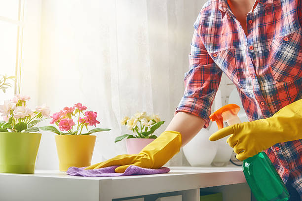 woman makes cleaning Beautiful young woman makes cleaning the house. Girl rubs dust. chores stock pictures, royalty-free photos & images
