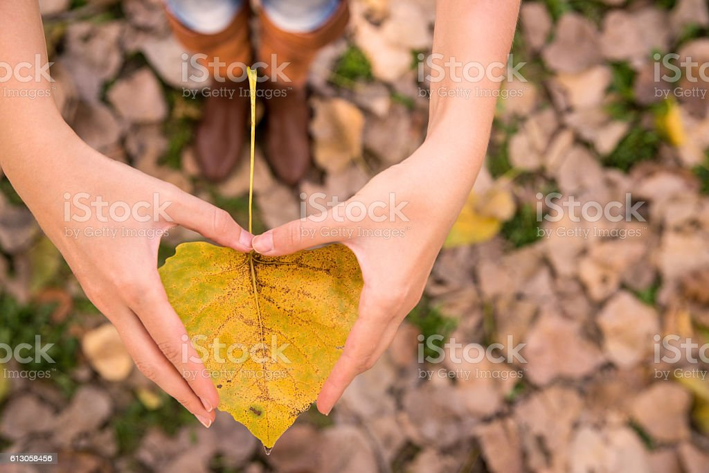 Woman making Heart-shape for the autumn leaf – Foto