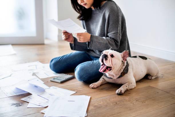 mulher de gestão da dívida - cachorro desenho - fotografias e filmes do acervo