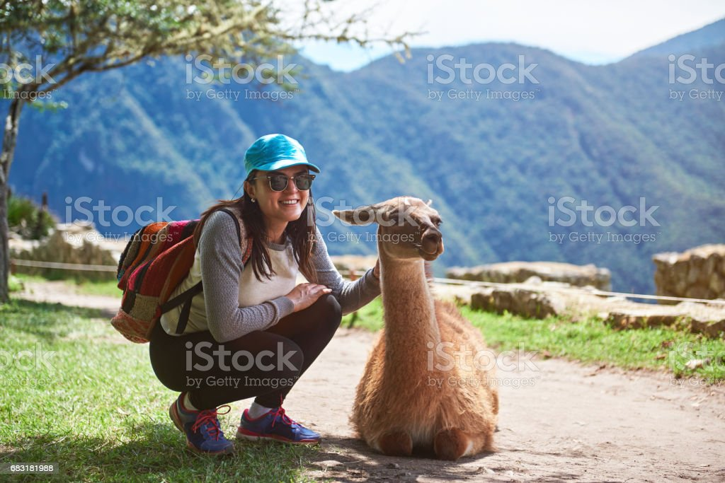 Woman meet lama in hiking trail royalty-free 스톡 사진