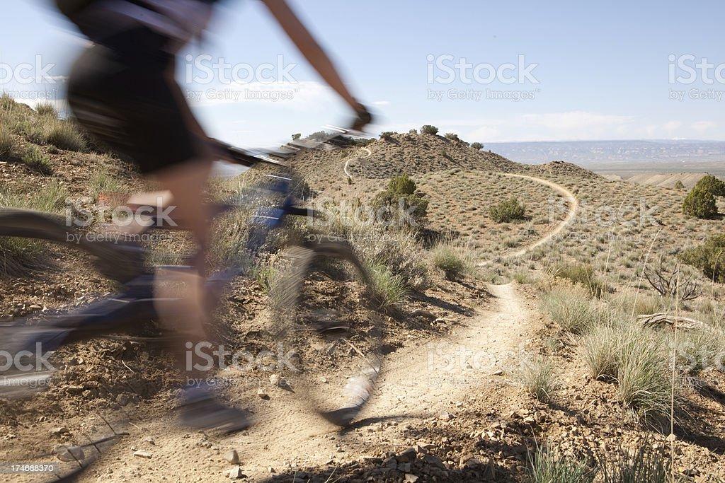 Woman mountain biking on a trail in colorado royalty-free stock photo
