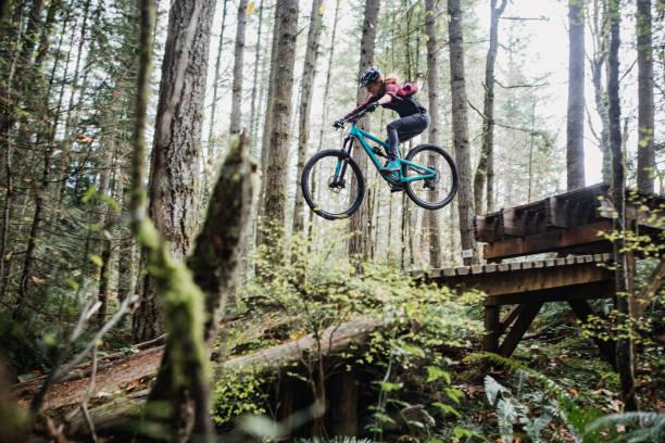 Woman Mountain Biking On Forest Trails stock photo
