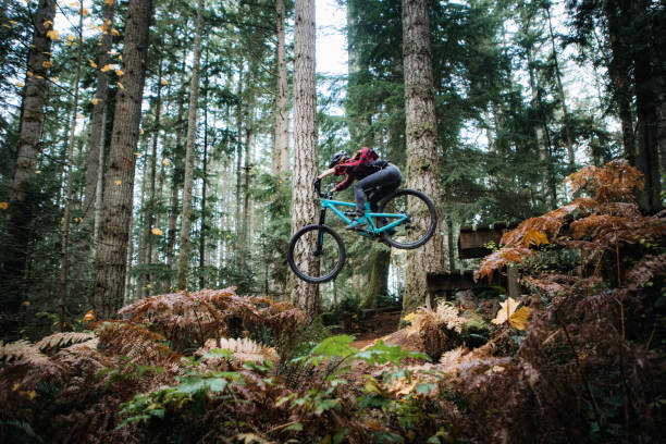 Woman Mountain Biking On Forest Trails An adult woman on a mountain bike flies through the air off of a jump on a Pacific Northwest forest mountain bike trail.  Shot in Issaquah, Washington, USA. mountain biking stock pictures, royalty-free photos & images