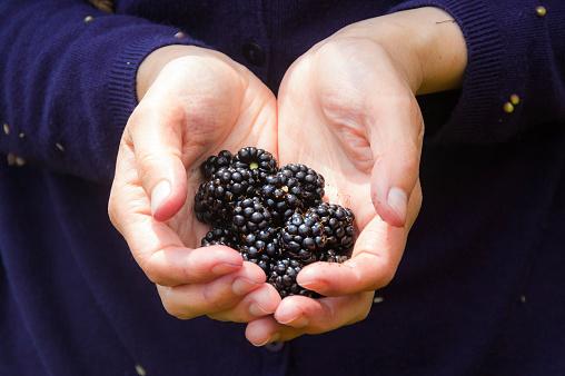 Woman Offering Berries