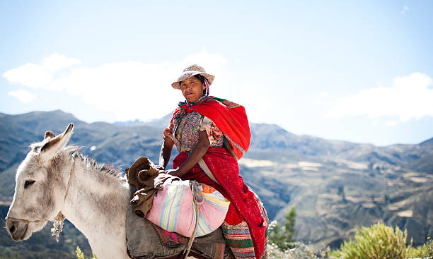 woman on a donkey - peruvian ethnicity stock pictures, royalty-free photos & images
