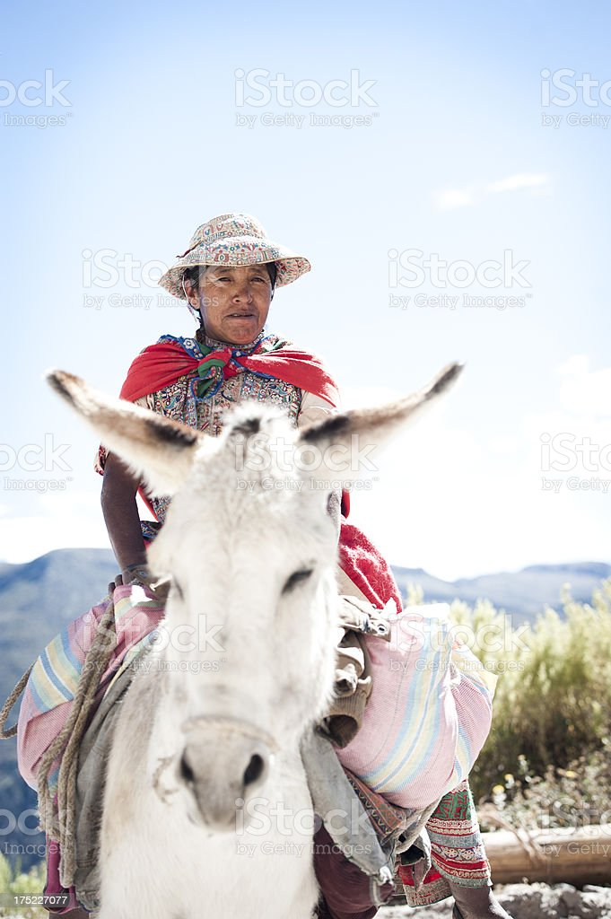 Woman on a Donkey stock photo