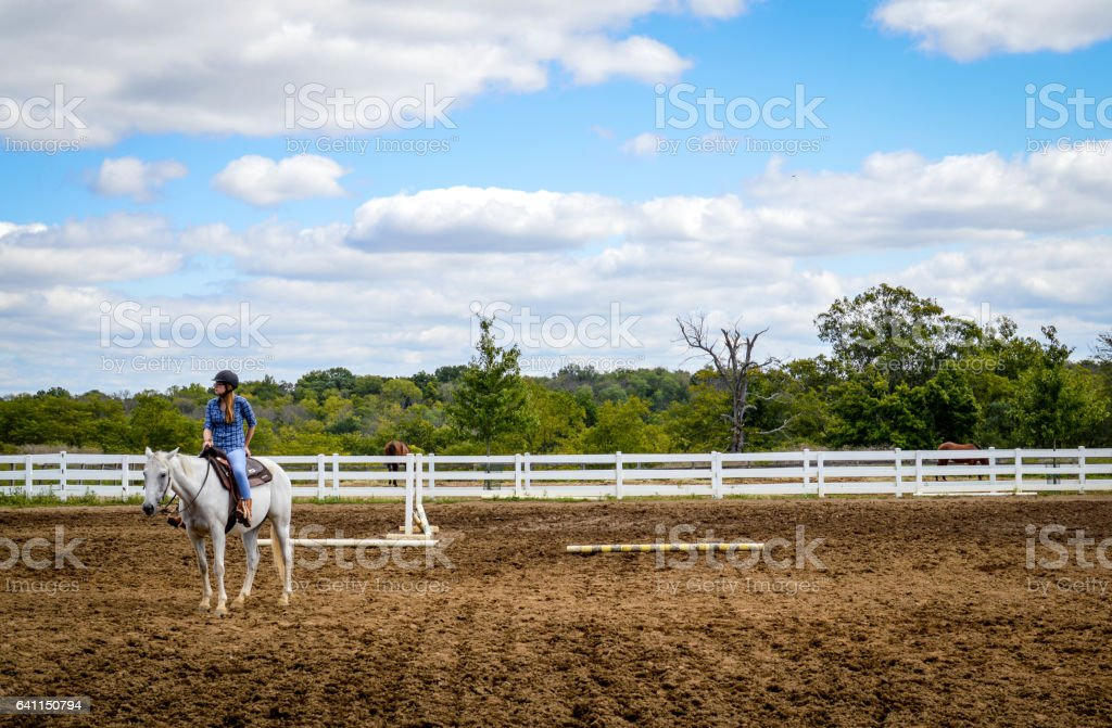 Woman on a Horse in a Field with White Fencing, Tree-lined Backdrop and Bright Sky stock photo