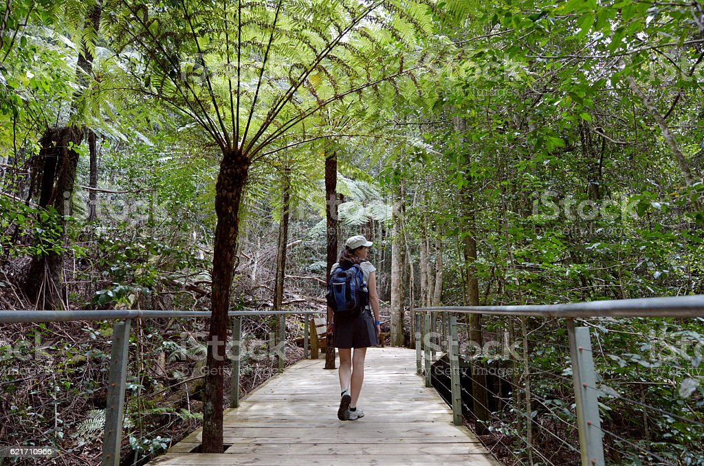 Woman on a path in Jamison Valley Blue Mountains, Australia stock photo