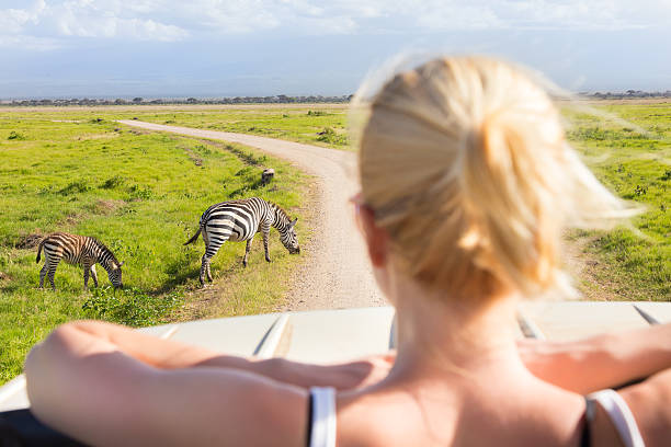 woman on african wildlife safari. - safari stock photos and pictures