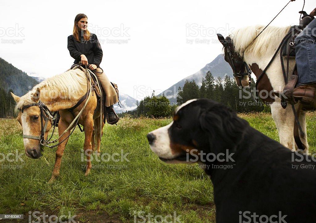 Donna a cavallo in campo con il cane in primo piano foto stock royalty-free